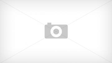 Пружина (1 компл./12-24 шт.) для гусеничный экскаватор HITACHI ZX520-3 (0788815)